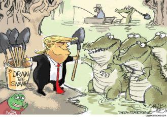 drain swamp