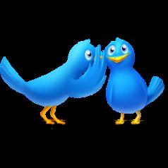 Gossip twitter birds