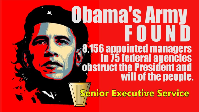 Obama Senior Executive Service Meme