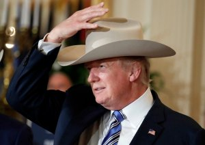 Trump in White Hat