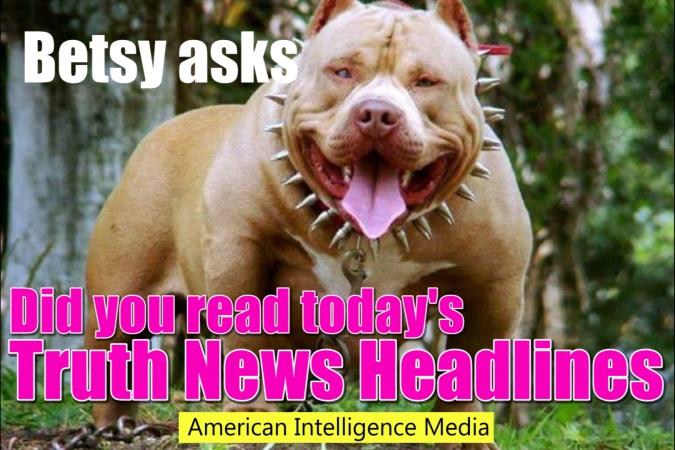 AIM Betsy bulldog