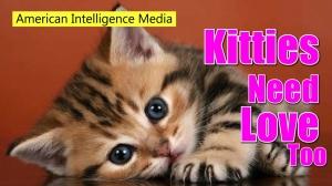 Kitties need love