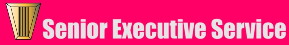 SES pink banner