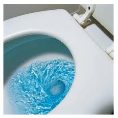 https://aim4truthblog.files.wordpress.com/2018/05/blue-toilet-water.jpg?w=241&zoom=2