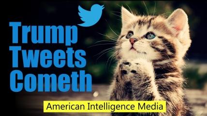Trump tweets cometh