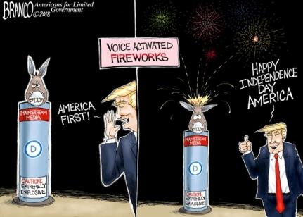 lib-fireworks-dt-Branco