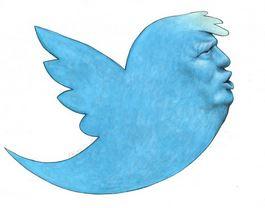Trump as a twitter bird