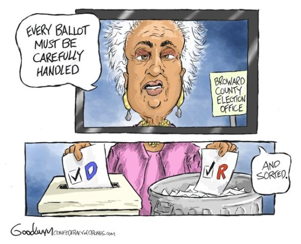 every vote must be counted