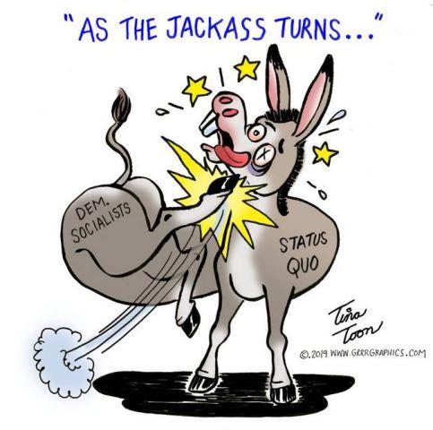 democrat jackass