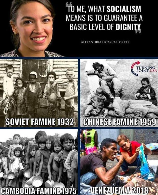 socialism meme
