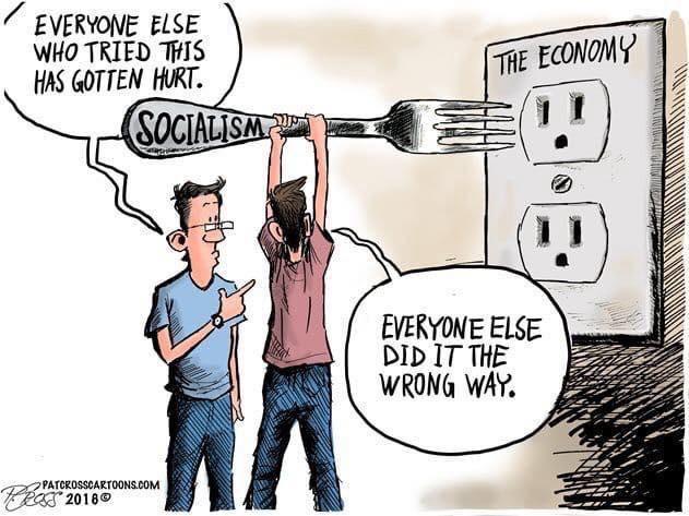 socialism cartoon.jpeg