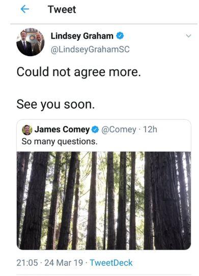 lindsay graham tweet