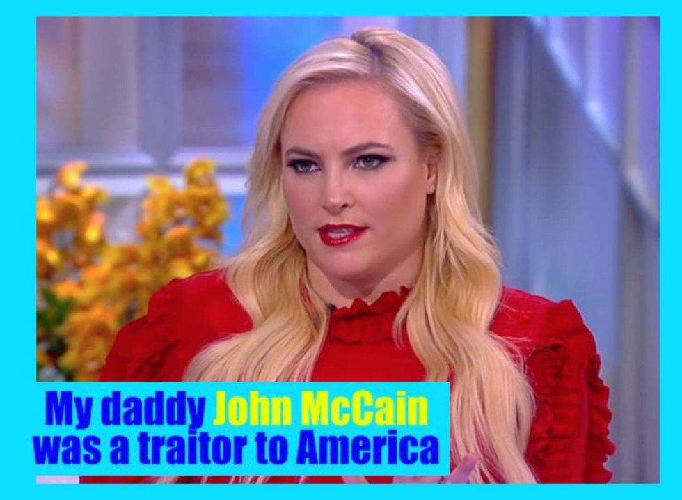 meghan mccain daddy