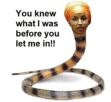 omar snake