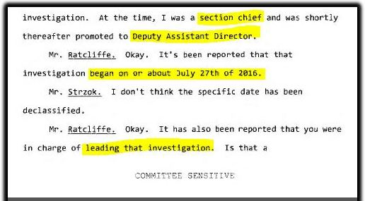 strzok section chief