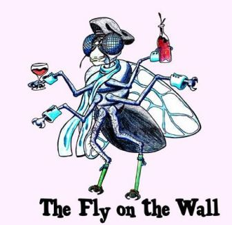 fly on the wall.JPG