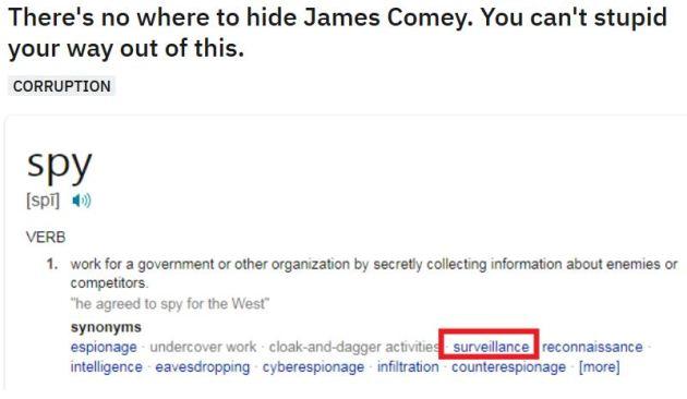 james comey spy definition.JPG