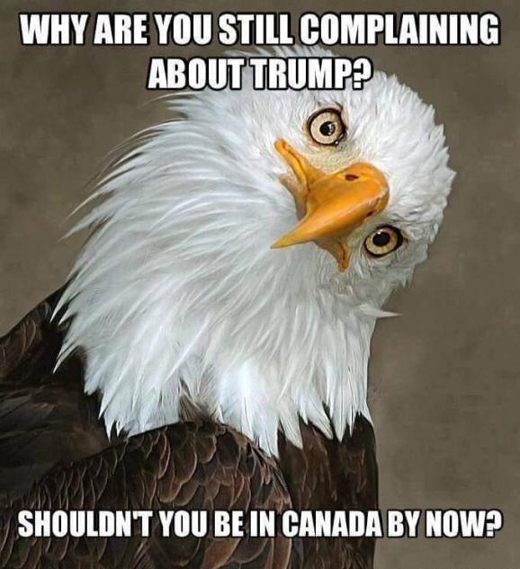 trump eagle