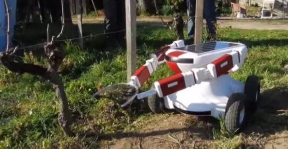 pruner robot
