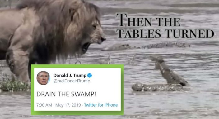 tables turned drain swamp.jpg
