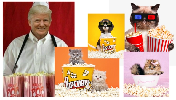 Trump cats and popcorn.jpg