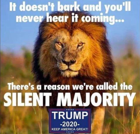 lion majority