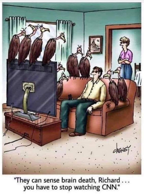 vultures cnn.JPG