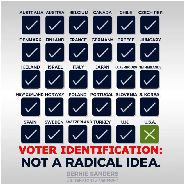 bernie voter id election.JPG