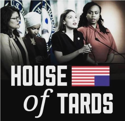 house of tards squad aoc omar rashid.JPG