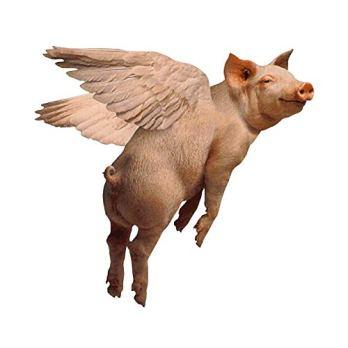 pig flies.jpg