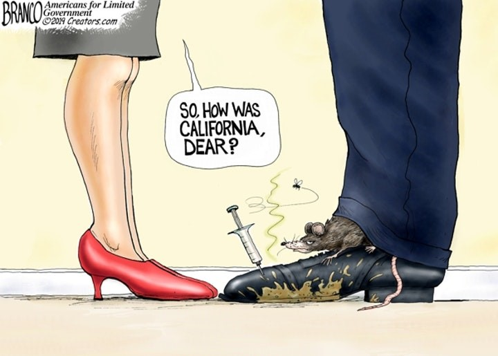 california rat branco