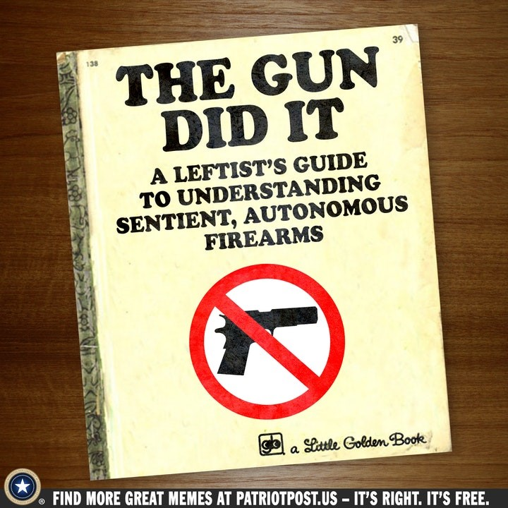 gun control book.jpg