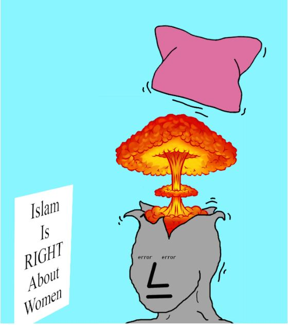 islam women pussy hat npc.JPG