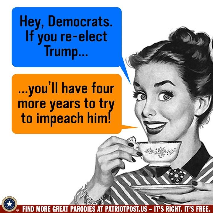 elect democrats impeach.jpg