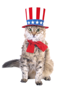 patriot_cat-removebg-preview (1).png