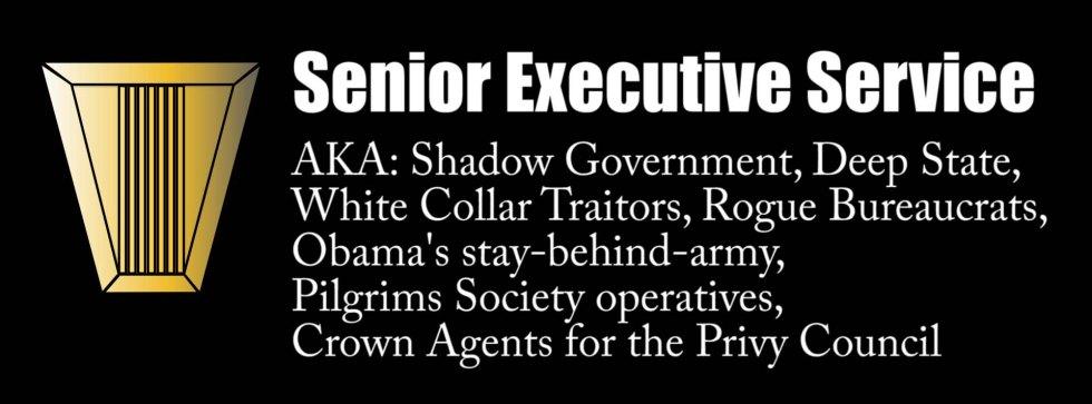 senior executive service ses.jpg