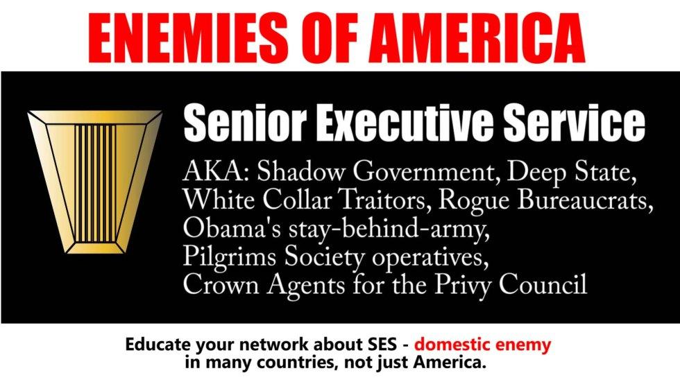 ses enemy senior executive.jpg