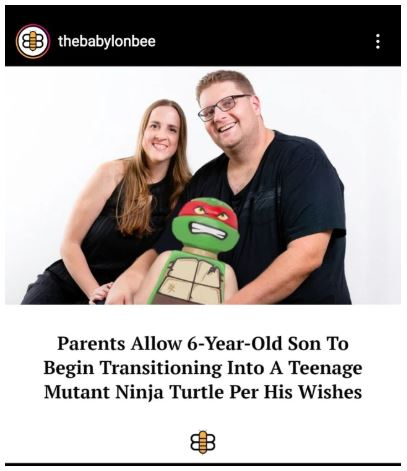 transgender ninja turtle.JPG