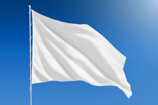 white flag.jpg