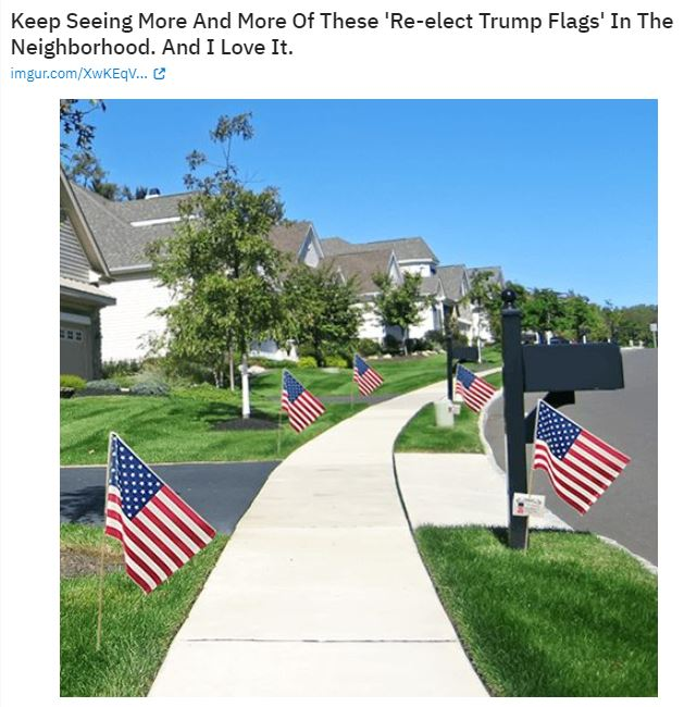 american flags election