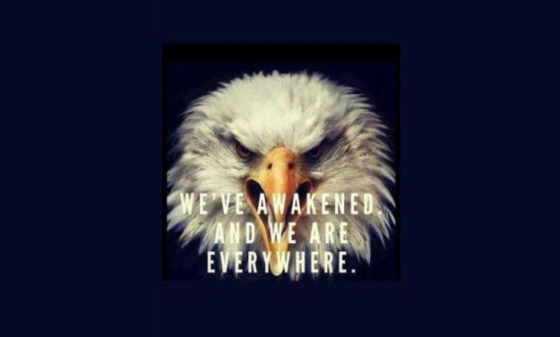 eagle awake patriot