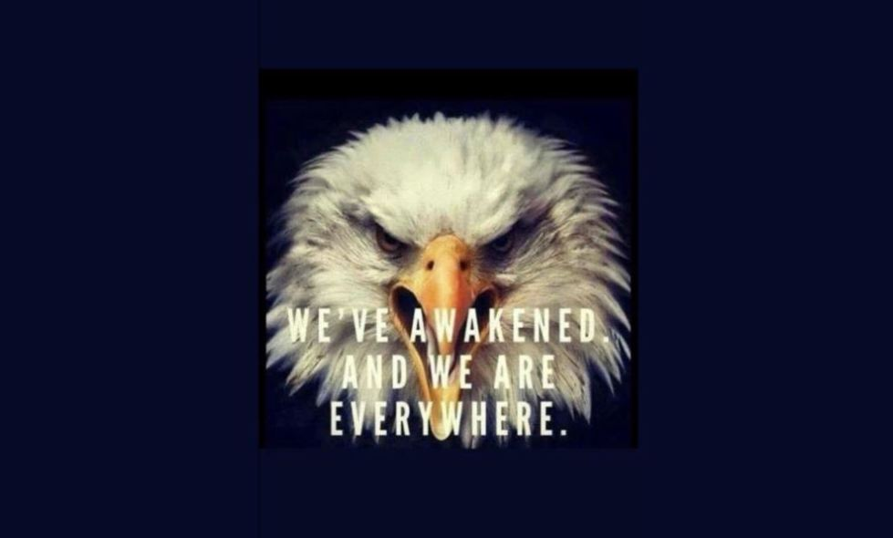 eagle awake patriot.JPG