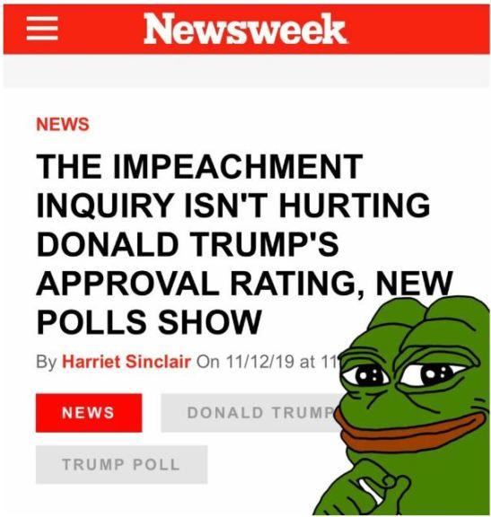 newsweek polls.JPG