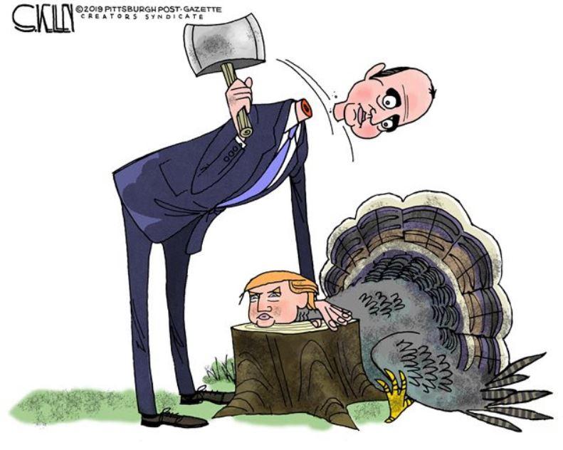 schiff neck turkey.JPG