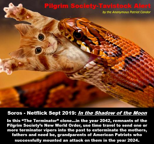 soros netflix cat viper.png