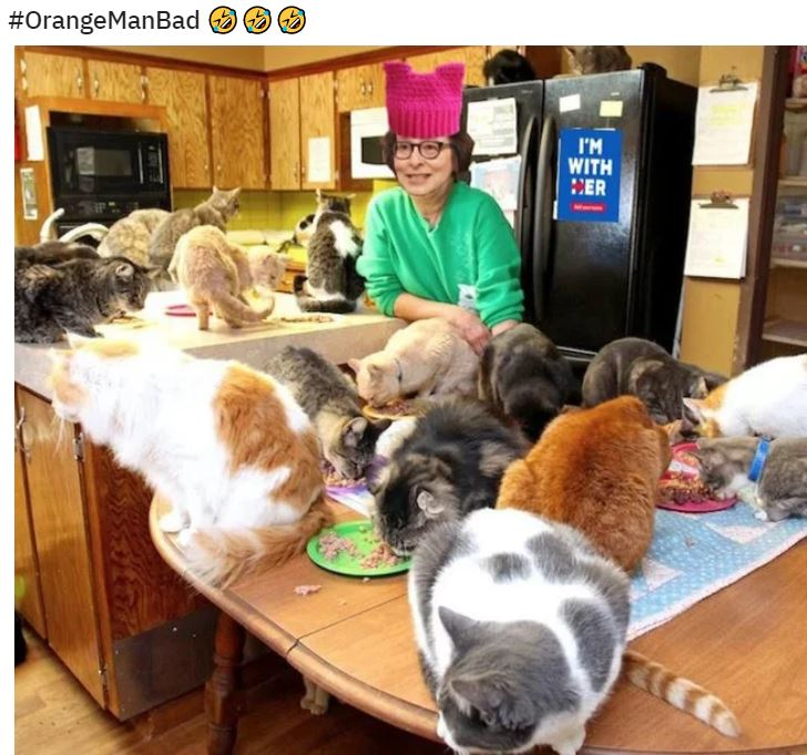 cat lady pussy hat.JPG