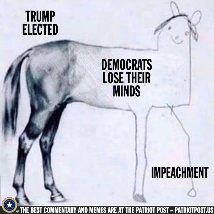 impeachment horse.jpeg