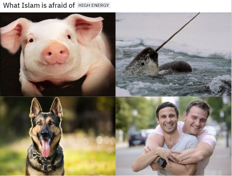 islam fear.JPG