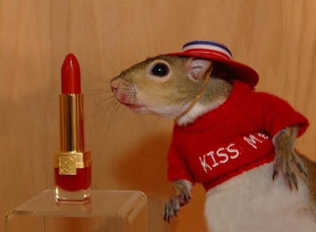kiss me mouse lisa page.jpg