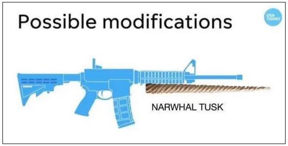 narwhal tusk 2.JPG